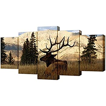 Amazon.com: VVOVV Wall Decor - Deer In Autumn Forest Painting ...