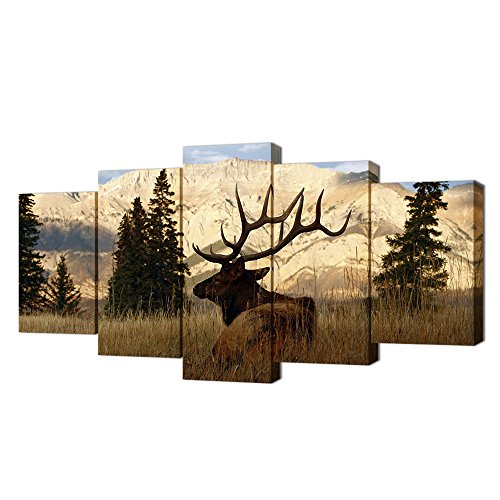 VVOVV Wall Decor - Deer In Autumn Forest Painting Giclee Prints Wildlife Pictures Animal Elk Poster Canvas Art Wall Decor Modern Framed (Wild Animals Photo Gallery)