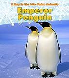 Emperor Penguin, Katie Marsico, 1432953346