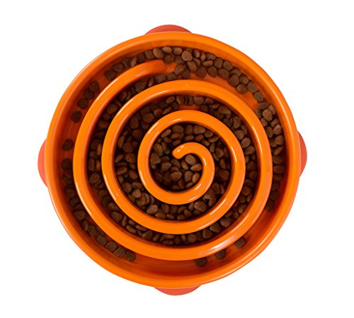 Outward Hound Fun Feeder Dog Bowl Slow Feeder Stop Bloat for Dogs, Large, Orange