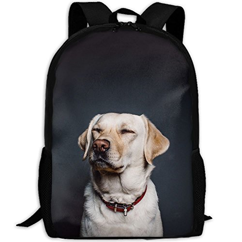 Unisex 5 Eye Padded Collar (Small Eyes Labrador Dog Backpack Briefcase Laptop Travel Hiking School Bags Stylish Daypacks Shoulder Bag)