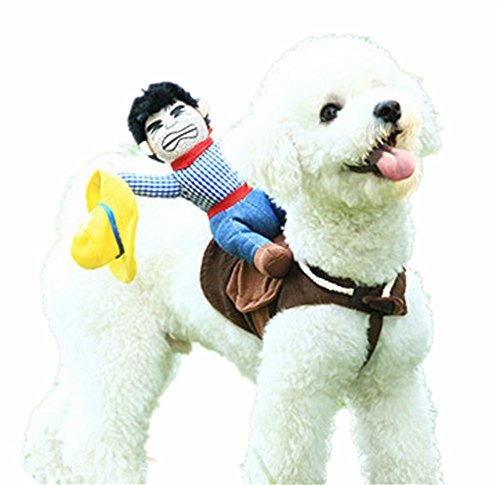 Hotumn Dog Costume Pet Costume Pet Suit Cowboy Rider Style Dog Halloween Costume Pet Funny Clothes (M)