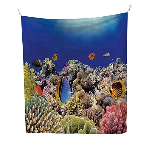 Oceansimple tapestryWild Sea Life Colorful Ancient Coral Reefs Exotic Fishes Bali Indonesia 60W x 91L inch Art tapestryTan Blue and Orange