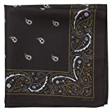 Tech Bandana/Handkerchief, 18 Inch Microfiber Cleaning Cloth (Embark - Black)