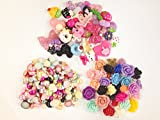 DIYJewelryDepot TM: 150pc Assorted Size & Color Flat Back Pearls Cabochons & Flower/Animals/Sweets Flat Back Reins