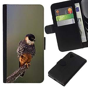 All Phone Most Case / Oferta Especial Cáscara Funda de cuero Monedero Cubierta de proteccion Caso / Wallet Case for LG Nexus 5 D820 D821 // bebé naturaleza de primavera pájaro ramificación borrosa