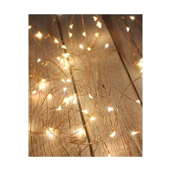 Litogo Luci LED Batteria, Catena Luminosa 5m 50 LED Fairy Light Filo Rame Ghirlanda Luminosa Lucine LED Decorative Waterproof per Camere da Letto Giardino Casa Feste Natale Matrimonio (Bianco Caldo) 1 spesavip