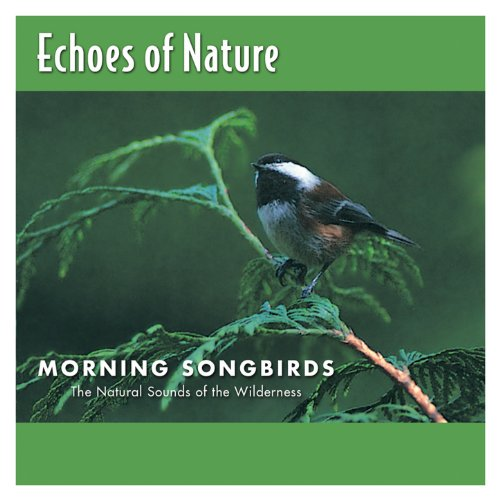 - Morning Songbirds