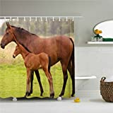 starlight-Bracele The brown horse took his pony baby for a walk, green grass.Mildew proof, waterproof, polyester%% machine washable, environmentally friendly,