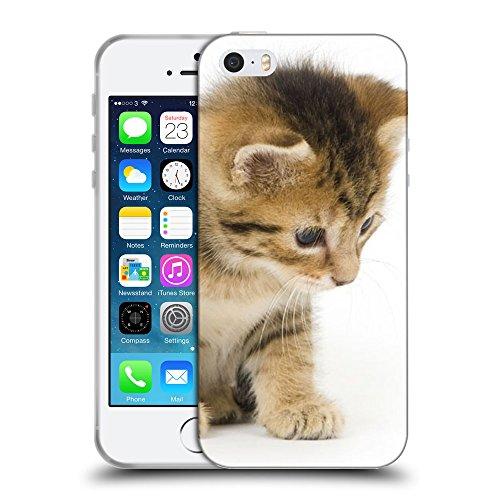 Just Phone Cases Coque de Protection TPU Silicone Case pour // V00004265 regard curieux de chaton mignon // Apple iPhone 5 5S 5G SE