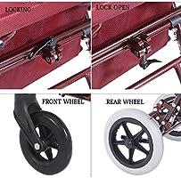 Shopping Trolley- El Viejo dobla el Carro de la Compra, el Andador ...