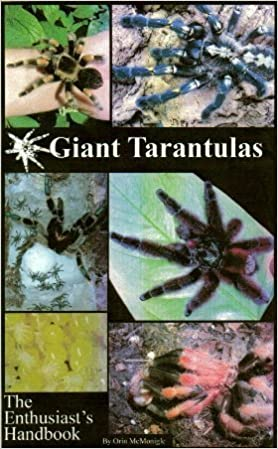 Giant Tarantulas The Enthusiasts Handbook Orin Mcmonigle
