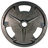 VTX by Troy Barbell Olympic Grip Plate