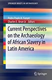 Current Perspectives on the Archaeology of African Slavery in Latin America, , 1493912631
