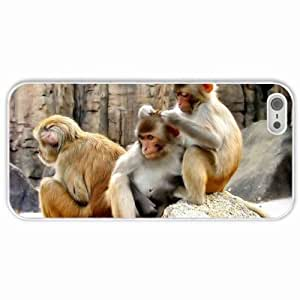 High-end Custom Custom Fashion Design IPhone 5 5S Back Cover Case Personalized Customized Diy Gifts In Grooming monkeys White at Little Man