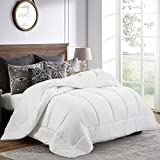 Balichun Queen Comforter (88 by 88 inches) - White Down Alternative Comforters Soft