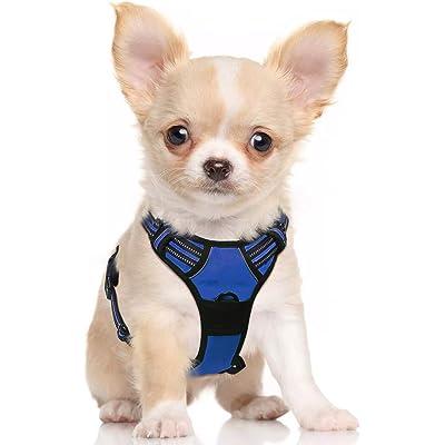 rabbitgoo Arnés para Perro Pequeño Arnes Antitirones Perro Lineas Reflectores Mejor Seguridad en Noche Color Azul Tamaño S Pequeño