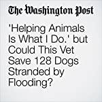 'Helping Animals Is What I Do.' but Could This Vet Save 128 Dogs Stranded by Flooding?   Abigail Hauslohner