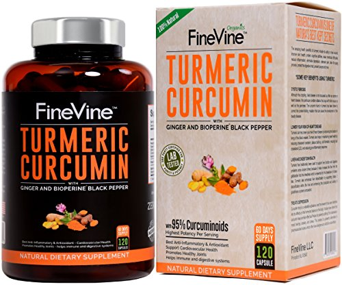 Turmeric Curcumin with BioPerine Black Pepper and Ginger - Made in USA - 120 Vegetarian Capsules for Advanced Absorption, Cardiovascular Health, Joints Support and Anti Aging Supplement (120 (Best Curcumin Capsules With Bioperines)