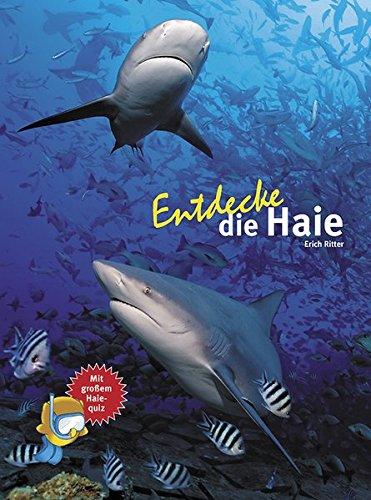 Entdecke die Haie (Entdecke - Die Reihe mit der Eule / Kindersachbuchreihe)