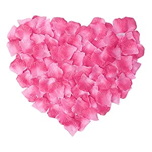 Livelynine Silk Rose Petals for Romantic Decorations Special Night 1000PCS Flower Petals for Weddings Decor Party Valentine's Day Aisle Runners Engagement Decorations,Pink & Fuchsia 44