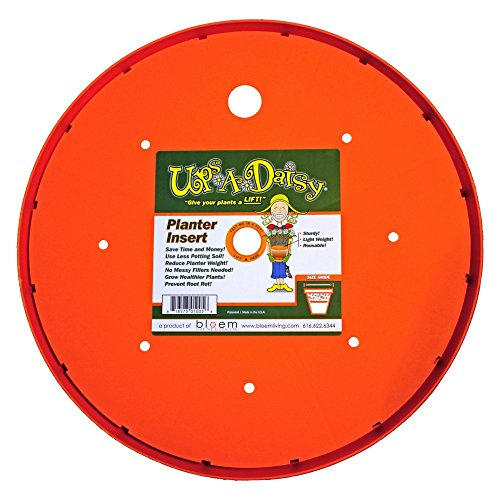 (Bloem Ups-A-Daisy Resin Planter Filler)