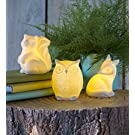 Magic Cabin Ceramic Woodland Animal Night Lights