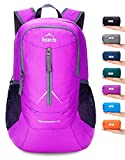 Venture Pal 25L - Durable Packable Lightweight Travel Hiking Backpack Daypack Small Bag for Men Women Kids (Purple)