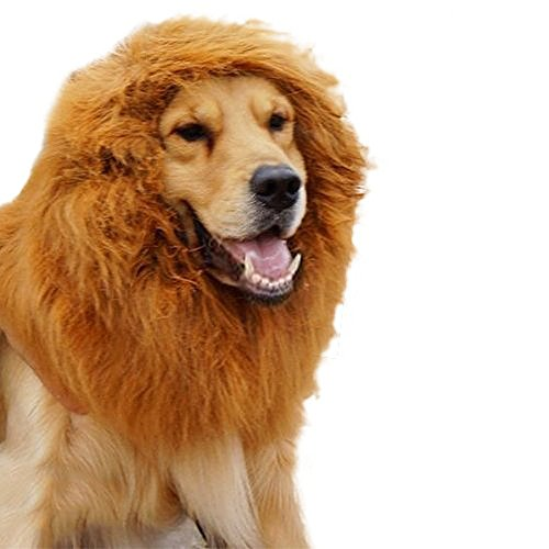 Wonderpark Light Brown Color Pet Costume Lion Mane Hair Wig for Pet Dog/cat Halloween Festival Party Clothes Fancy Dress