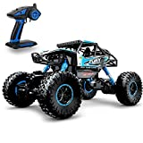 Geekper Electric Offroad Remote Control RTR RC Bug (Small image)