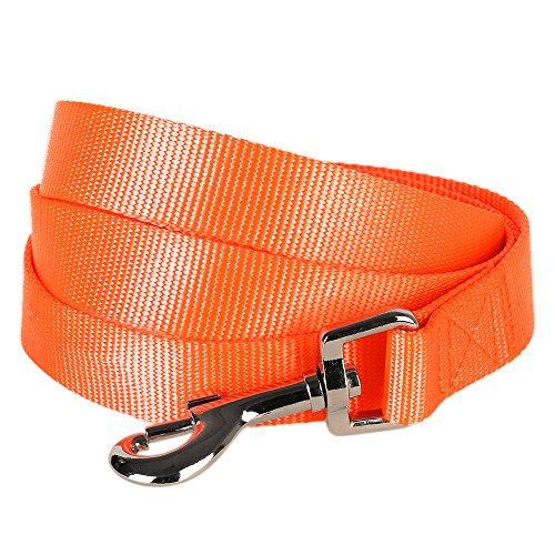 "Blueberry Pet 19 Colors Durable Classic Dog Leash 5 ft x 5/8"", Florence Orange, Small, Basic Nylon Leashes for Dogs"