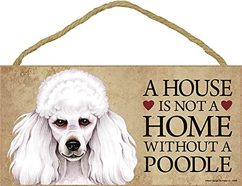 Poodle Wood Dog Sign Wall Plaque Photo Display 5 x 10 - House Is Not A Home + Bonus Coaster (Poodle Dog Pictures)