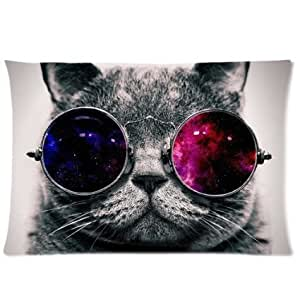 Cool Cat with Galaxy Glasses Custom Zippered Pillowcase Pillow Cases Cover Home Decorative 20x30 Inch (One side)