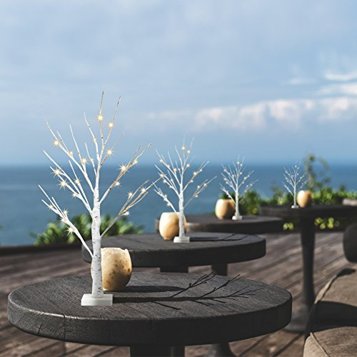 EAMBRITE Set of 2 2FT 24LT Warm White LED Birch Tree Light Tabletop Bonsai Tree Light Jewelry Holder Decor for Home Party Wedding Holiday]()