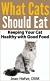 What Cats Should Eat: How to Keep Your Cat Healthy with Good Food