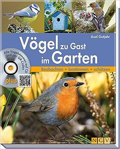 Download Pdf Vögel Zu Gast Im Garten Beobachten Bestimmen