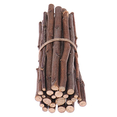 Hypeety Pet Snacks Apple Wood Sticks Chew Toy for Squirrel Rabbits Bunny Guinea Pigs Chinchilla Hamster 100g (3.5oz)