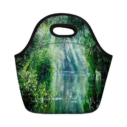 (Semtomn Lunch Tote Bag Tortuguero National Park Rainforest Costa Rica Caribbean Coast Central Reusable Neoprene Insulated Thermal Outdoor Picnic Lunchbox for Men Women)