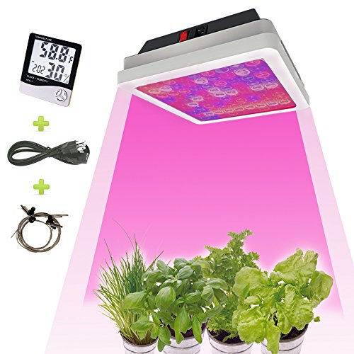 LED Grow Light 540W,with Thermometer Humidity Monitor,Double Chip Hydroponics Greenhouse Lighting Full Spectrum for Indoor Grow Tent Plants Veg and Flowers (540W LED Grow Light) by Leite