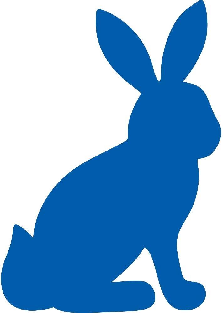 Silueta De Conejo Sentado Divertida Azul Azul Juego De 2 Pegatinas De Vinilo Impermeables Premium Para Teléfono Portátil Accesorio Para Casco De Coche Ventana De Coche Taza De Martillo Decoración De Pared De Puerta Sports Outdoors Amazon Com