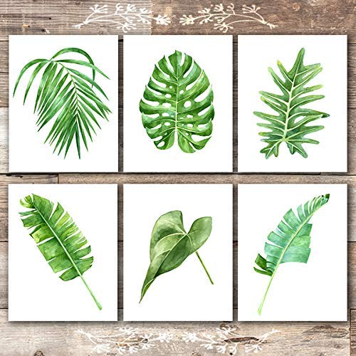 Amazon Com Tropical Leaves Wall Decor Art Prints Set Of 6 Unframed 8x10s Botanical Prints Wall Art Handmade The vibrant green hues in this beautiful piece of wall art, pop against the textured weave background, bringing both depth and colour to your walls. tropical leaves wall decor art prints set of 6 unframed 8x10s botanical prints wall art
