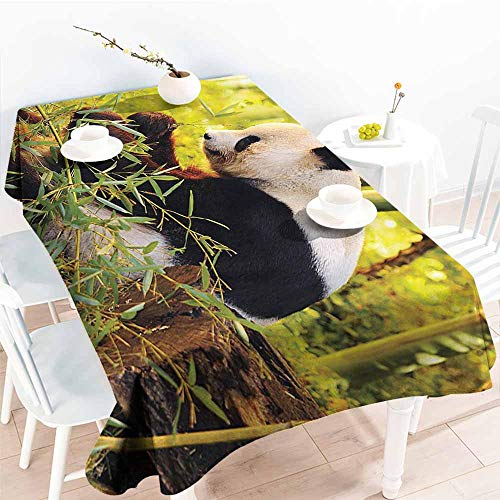(Homrkey Rectangular Tablecloth Animal Decor Big Panda Sitting in Forest Eating Bamboo Tree Trunk Foliage Wilderness Picture Print Green Black Table Decoration W60 xL84)