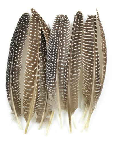 Touch of Nature 38193 Guinea Fowl Wing Quill, 7-Inch