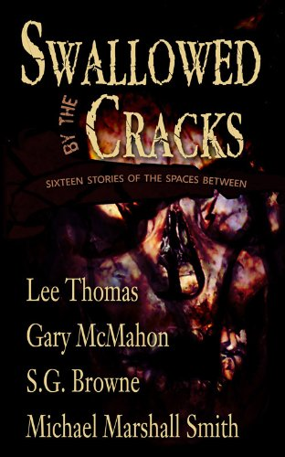 book cover of Swallowed By The Cracks