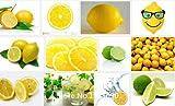 Promotion 50 Lemon seeds fruit Seeds Bonsai Fruit Tree Seeds For Home Garden for Backyard Novel Seed