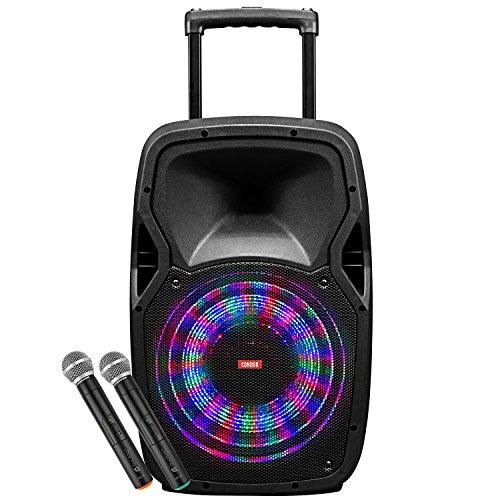 Portable Microphone Speaker System - 3