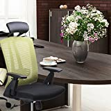 CMO 24 Hour High-Back Ergonomic Recling Office Chair with Tilt Lock, Leather Headrest and Flexible PU Armrest, Lime Green Mesh