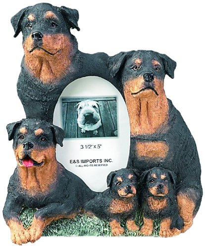 Rottweiler Gift Picture Frame Holds Your Favorite 3x5  Inch Photo,  A Hand Painted Realistic Looking Rottweiler Family Surrounding  Your Photo. This Beautifully Crafted Frame is A Unique Accent To Any Home or Office. The Rottweiler Picture Frame Is The Perfect Gift For Rottweiler Owners And Lovers!