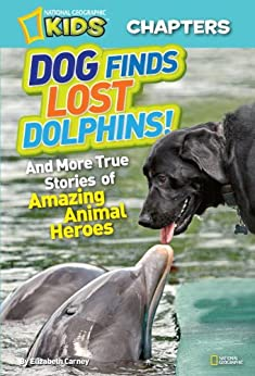 National Geographic Kids Chapters Dolphins ebook product image