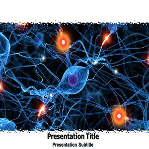 amazon com animated nervous system powerpoint templates animated